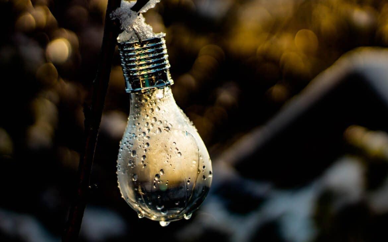 Moist bulb