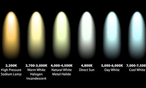 Various light tone options